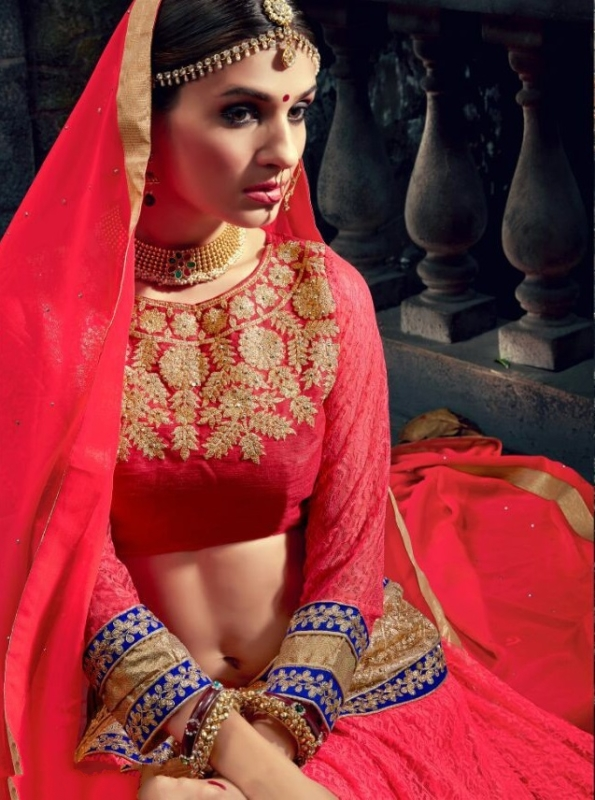 Red neck Embroidered Lehengas Choli